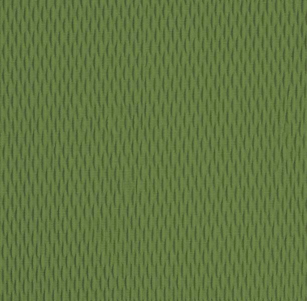 Funda elástica ajustable, modelo Túnez verde